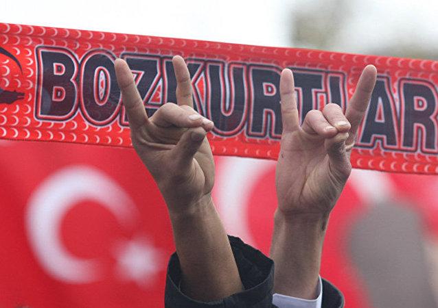 土耳其「灰狼」組織