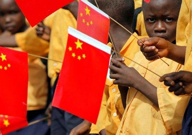 中國專家:中非根據雙方實際需要展開務實合作