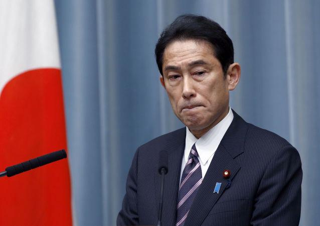 日本外相:支持美國在敘利亞的行動