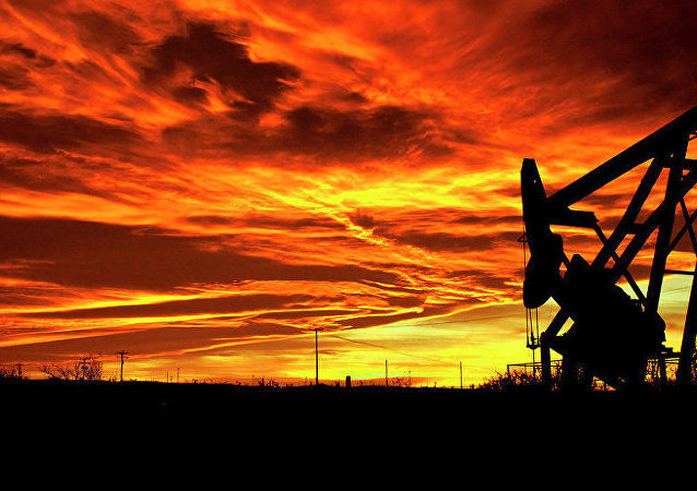 俄經濟發展部長:巴什石油公司國有股份45-48億美元估價公平合理