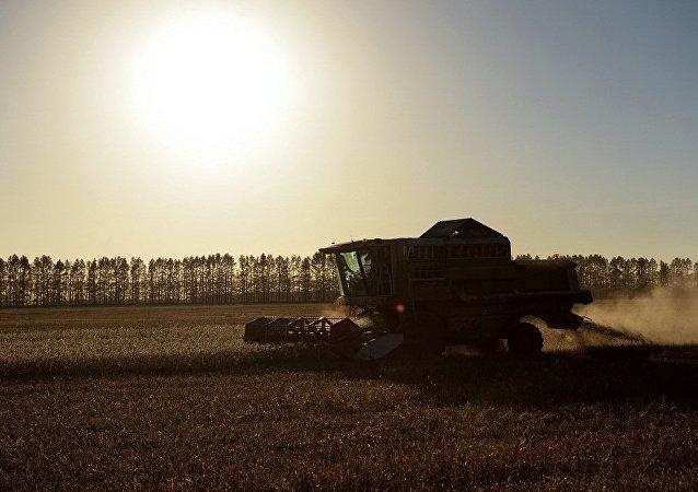 「俄羅斯農業」集團簽署對華出口油粕油渣協議