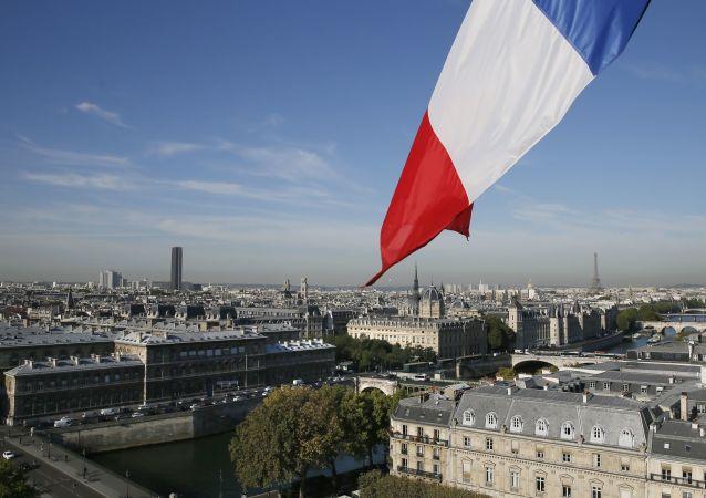 法國經濟部長主張推出雷諾公司的臨時領導