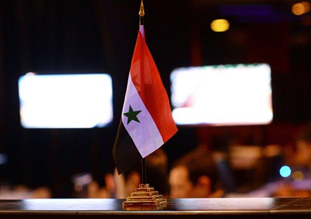 俄議員和PACE成員抵達敘利亞討論解決衝突