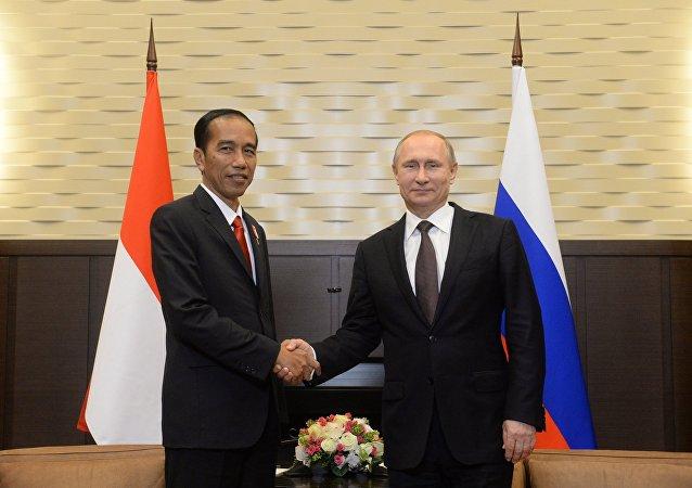 普京與印度尼西亞領導人探討雙邊關係與亞太地區局勢