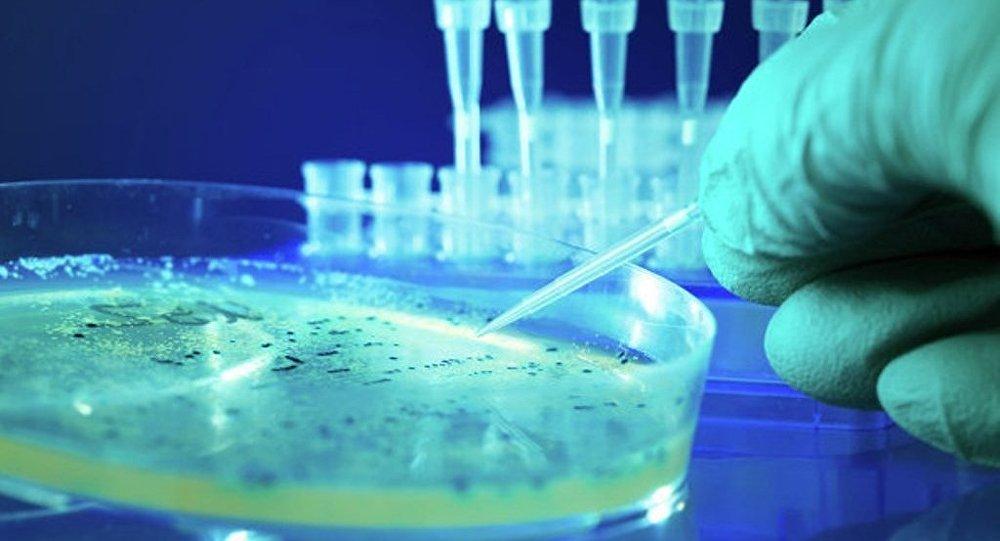 學者:越南微生物「殺手」可在24小時內殺死人類