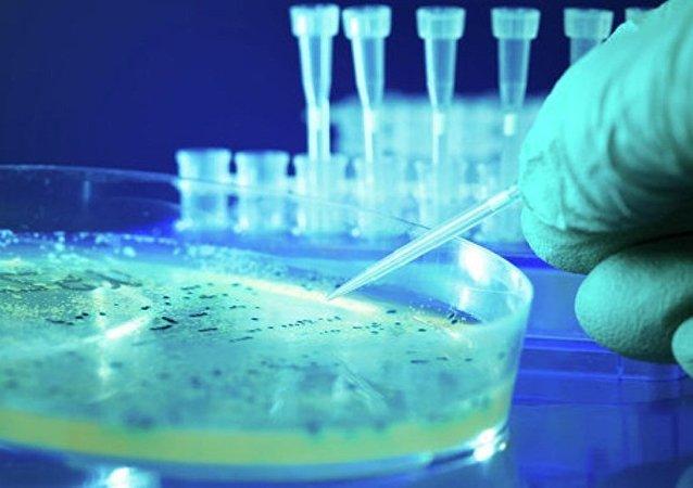 科學家們用光線創造了捕捉細菌的鈎子