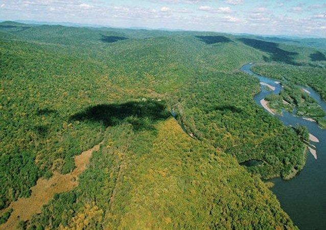 俄羅斯遠東一晝夜2900公頃森林被燒毀
