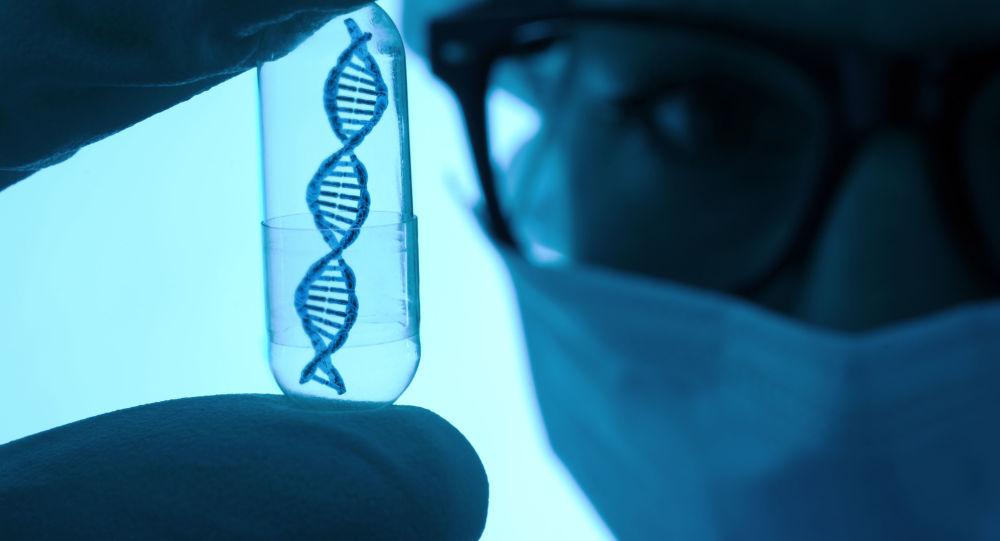科學家首次實現培植人豬結合體
