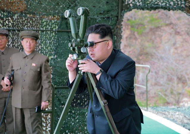 媒體:金正恩稱發射導彈是對美韓軍演的回應
