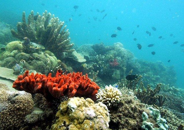 中國將研制全海深載人潛水器