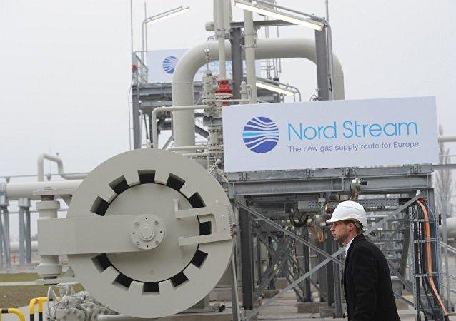 克宮:北溪-2項目是不存在政治背景的經濟項目