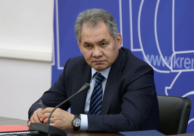 俄防長:俄西部邊境局勢因北約活動呈惡化趨勢