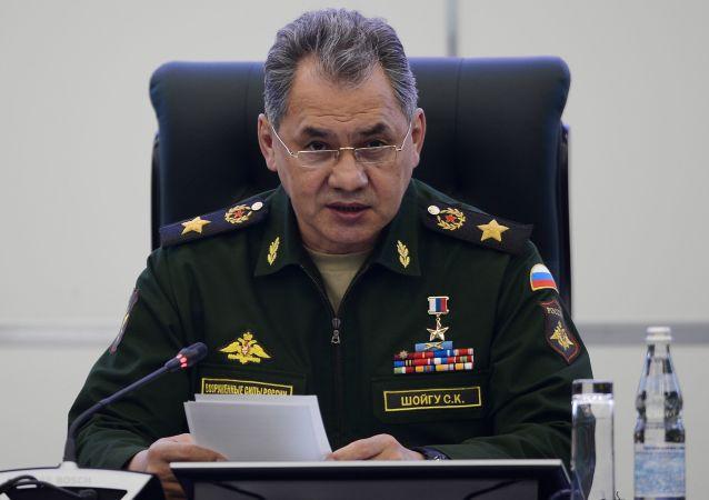 俄防長:印度加入上合組織為俄印合作開創新前景