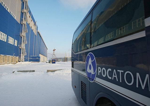 Х俄原子能公司打算2030年前至少讓28個核電機組在海外投入運行