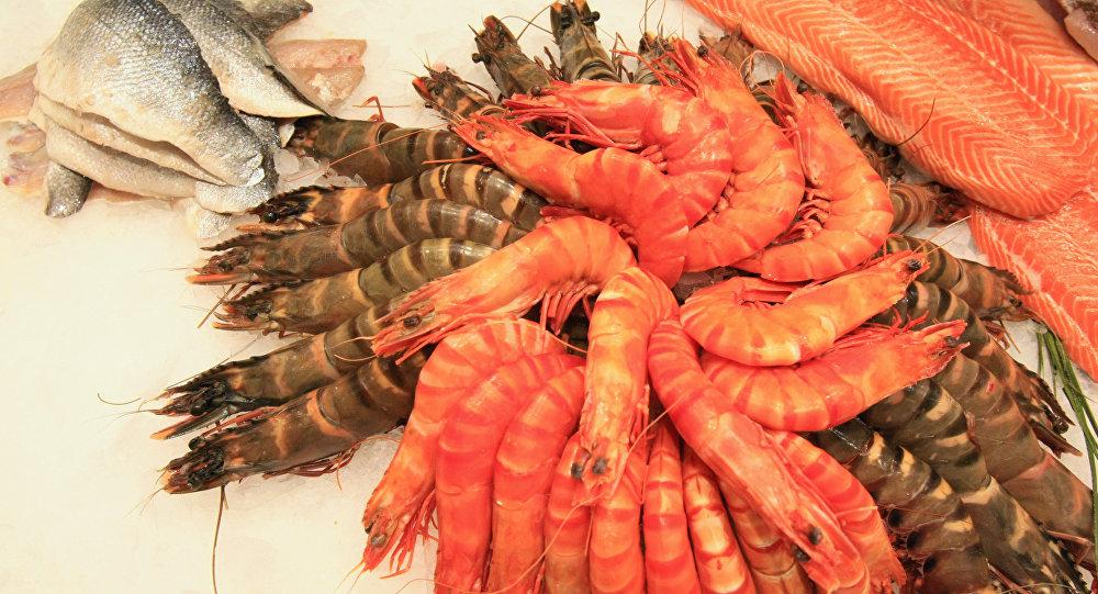 俄列寧格勒州企業將向中國和歐洲出口蝦類產品