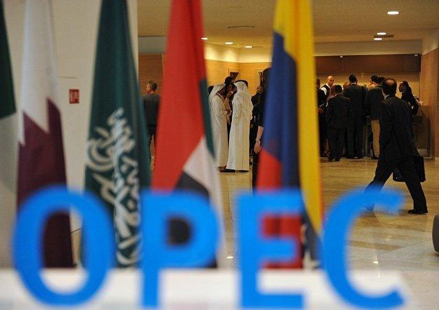 沙特能源大臣:尼日利亞收到加入非歐佩克產油國監督委員會的邀請