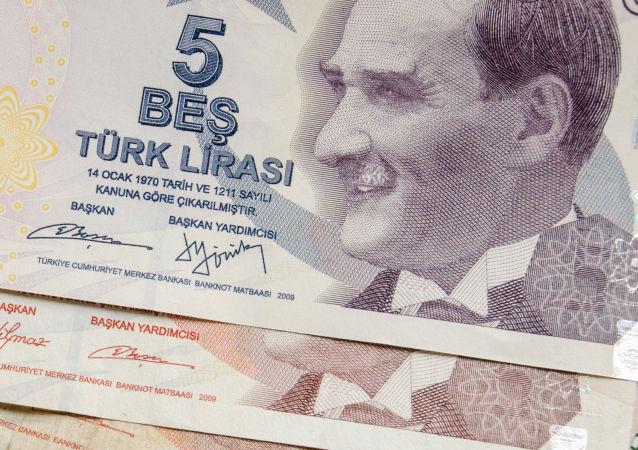 土耳其總統稱已提議俄羅斯在雙邊貿易中改用本幣結算