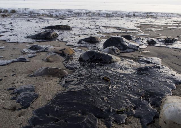 俄科學家研制出生物過濾器 可清理海水中的石油