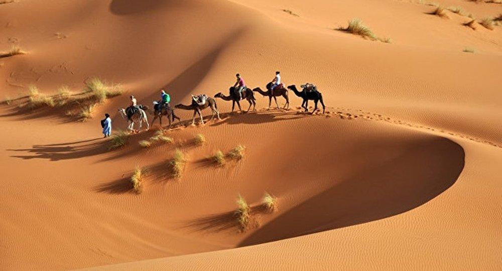 媒體:蠟助科學家解開撒哈拉乾旱之謎