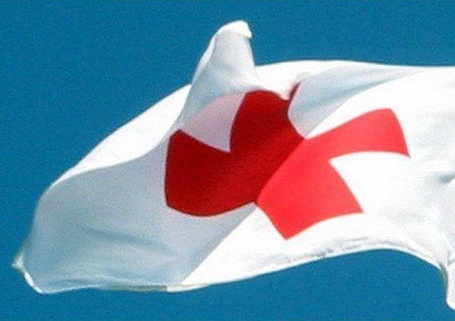 國際紅十字會
