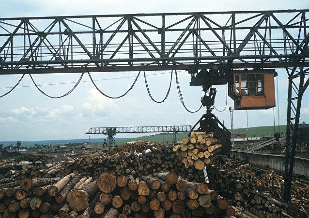 俄副總理下令制定木材加工項目落實監督機制
