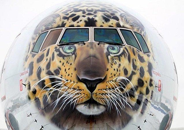 俄羅斯政府提議為遠東地區建立航空公司