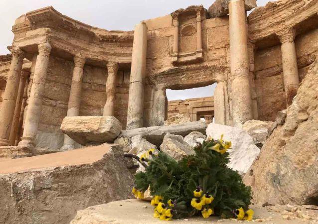 敘政府全面恢復巴爾米拉基礎設施
