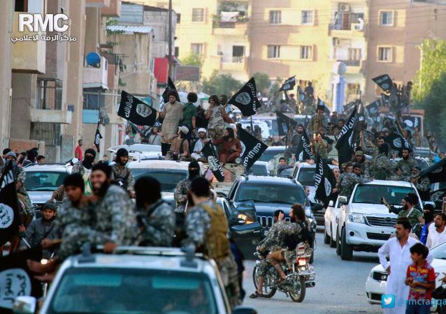 英駐土大使認為從拉卡放走「伊斯蘭國「分子的行為令人不齒