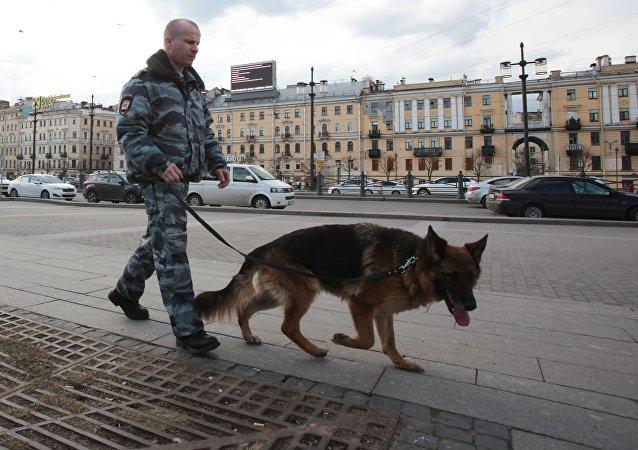聖彼得堡一住宅樓現爆炸裝置已拆除