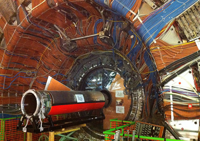 大型強子對撞機