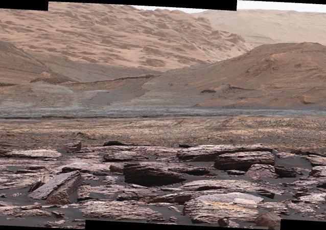 科學家:蚯蚓或可在火星土壤中存活