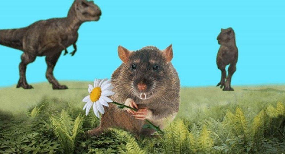 俄科學家發現遠古哺乳動物新物種