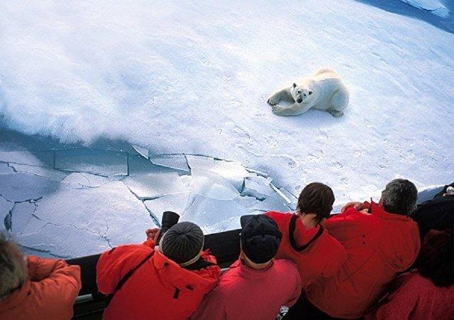 俄總統特使:俄無意讓出在北極科研領域的領先地位