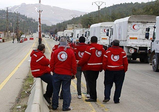 紅十字國際委員會:伊拉克和敘利亞死亡平民中的70%是在城市戰中被打死的