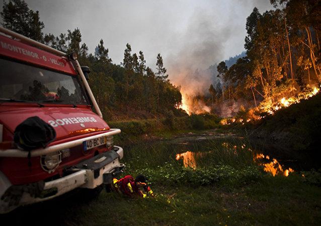 葡萄牙森林火災
