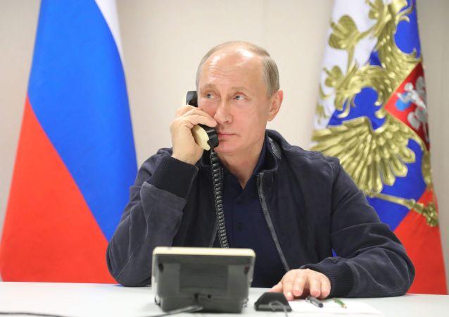 普京與巴林國王討論了去年9月在莫斯科會談期間達成協議的實施情況