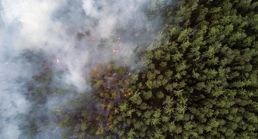 俄緊急情況部:森林大火的煙霧籠罩哈巴羅夫斯克