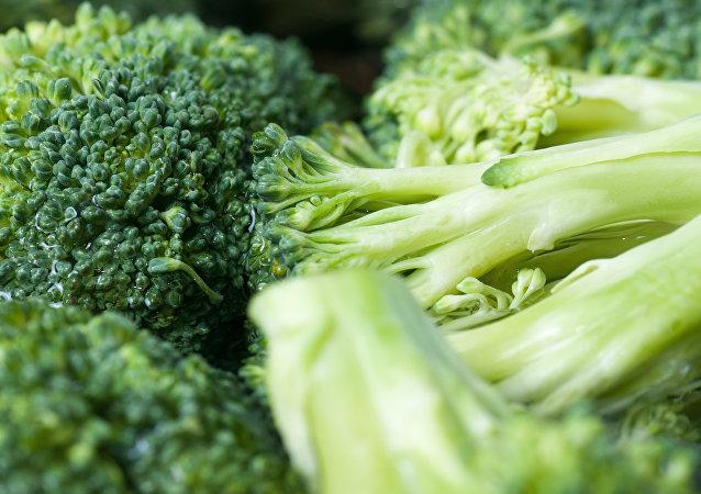 十字花科蔬菜