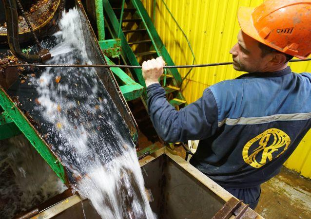 俄加里寧格勒琥珀聯合公司開工復產