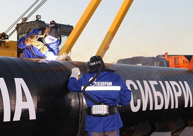 克宮:普京是否出席「西伯利亞力量」投產儀式還有待確定