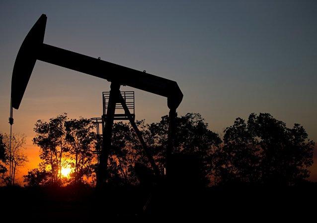 俄石油以39億美元價格收購印度埃薩石油公司49%股權