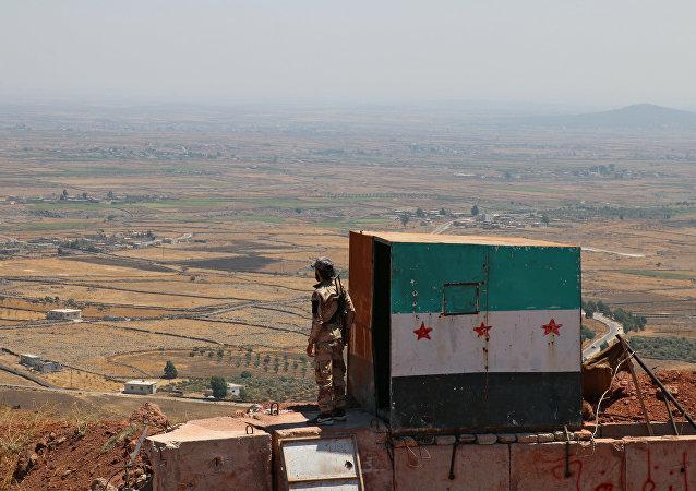 敘利亞境內的「伊斯蘭國」已被徹底擊敗