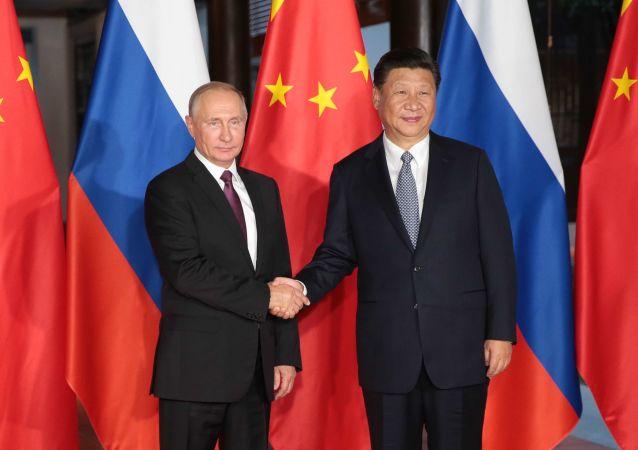 俄駐華大使:俄總統今年預計將訪華