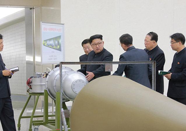 國際原子能機構總幹事:朝鮮核計劃引發嚴重不安