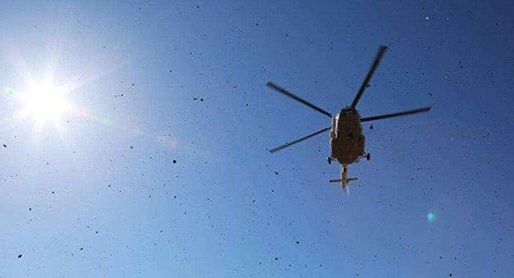 俄工貿部長:或向阿拉伯夥伴再出售部分俄直升機公司股份