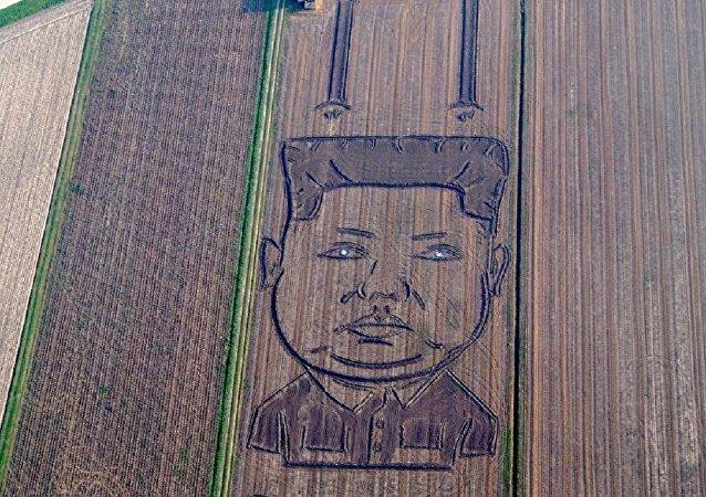 兩百多米長的金正恩畫出現在了意大利藝術家自家的地裡