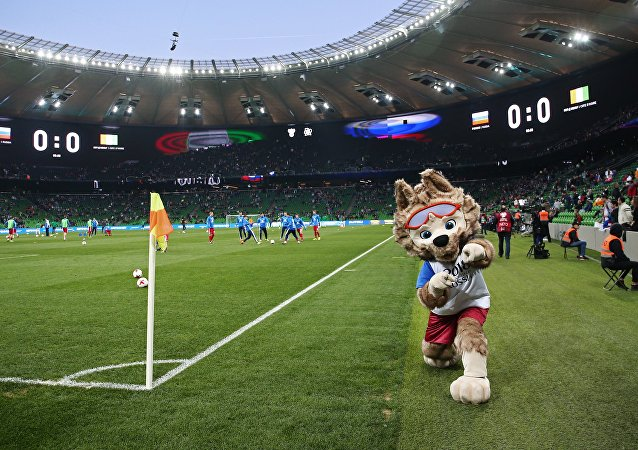 中國外交官高度評價俄方在世界杯期間為球迷提供的安保水平