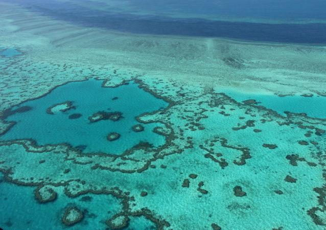 澳大利亞將撥款5億美元保護大堡礁不受氣候變化影響