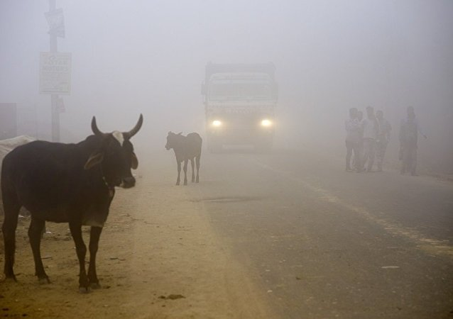印度北方邦一周內第二場沙塵暴致至少12人死亡