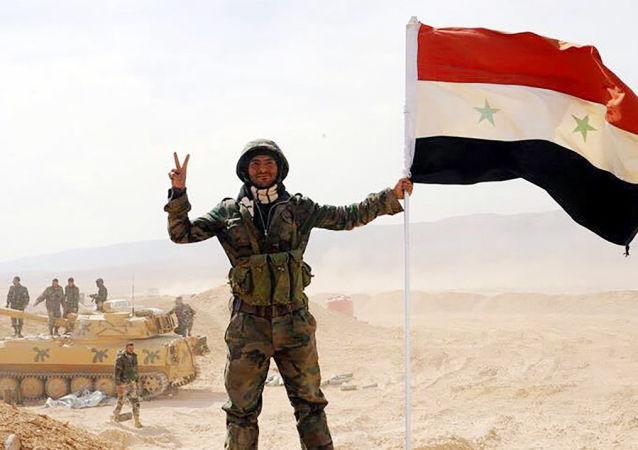 消息人士:敘政府軍解放代爾祖爾省8個居民點